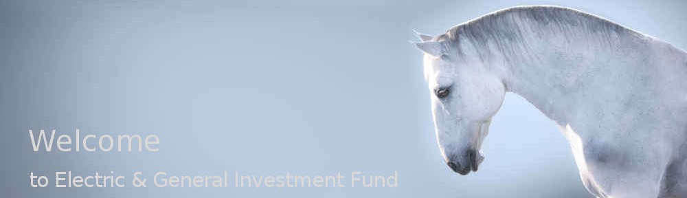 Electric and General Investment Fund
